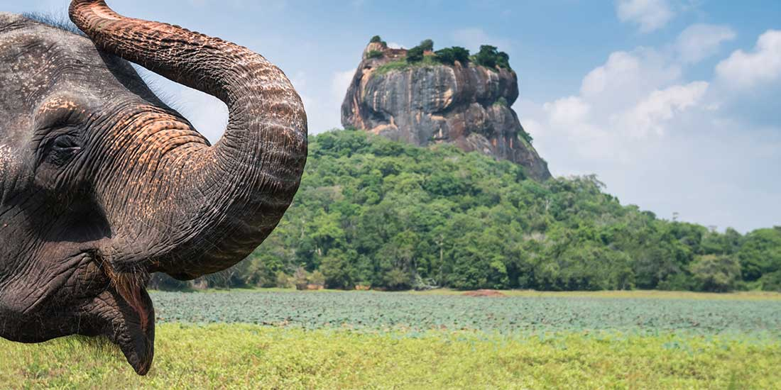 Sri Lanka Holidays. Destination guide to places, hotels, packages, and tailor-made experiences