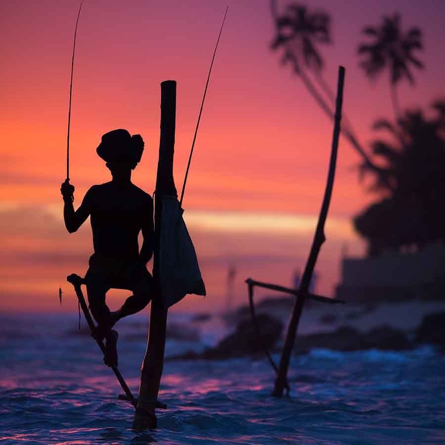 Sri Lanka Holiday Ideas